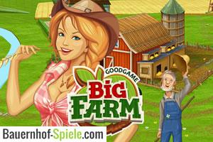 big farm bauernhof